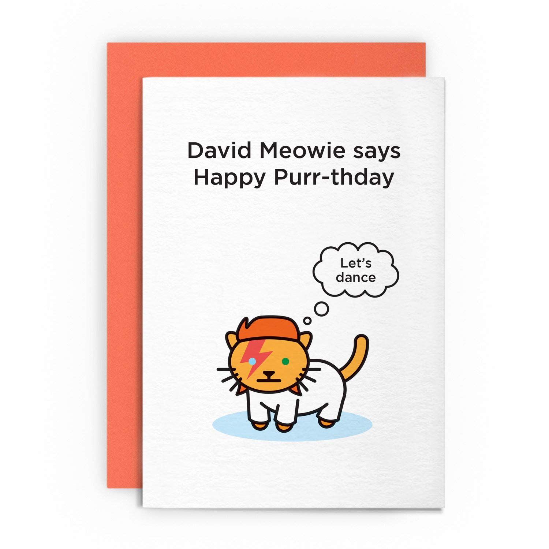 Birthday Card David Bowie Cat Animal Funny Husband Wife Boyfriend Girlfriend Ziggy Stardust Kitten Happy Greeting For Buy Online In Aruba At Aruba Desertcart Com Productid 68678721