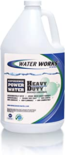 Water Works Heavy Duty Degreaser Concentrate, 1 Gallon