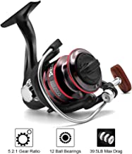 Joyday Fishing Reel, Spinning Reel, Ultralight 5.2:1 Gear...