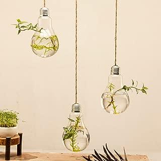Mkono 3 Pack Hanging Terrarium Flower Plant Glass Vase Light Bulb Shape Home Weeding Decor