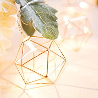 LED Rose Gold Geometric Light String Garden Fairy Lights, Party Event Decoration | Battery Operated, 5 ft. 10 LED Warm White(Hexagonal)