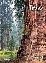 Trees 2021: Décor Calendar: Kalender 2021