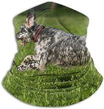 Linger In Calentador de Cuello Cute Blue Belton English Setter Dog Scarf, Polaina de Cuello, Gorra de Cuello Media máscara Pasamontañas Sombreros
