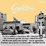 Secuencia de la guitarra Forte eagletone
