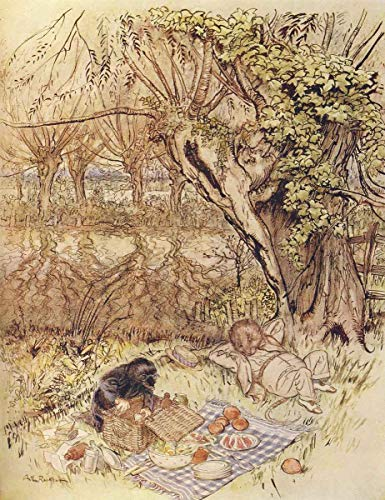 Wind in de Willows Arthur Rackham The Mole smeekte als een gunst om het allemaal zelf uit te pakken A3 doos canvas print
