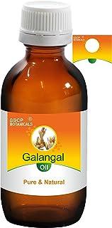 SSCP Botanicals Galangal Pure & Natural Essential Oil (Alpinia galanga) (250 ml ( 8.45 Oz) Aluminium Bottle)