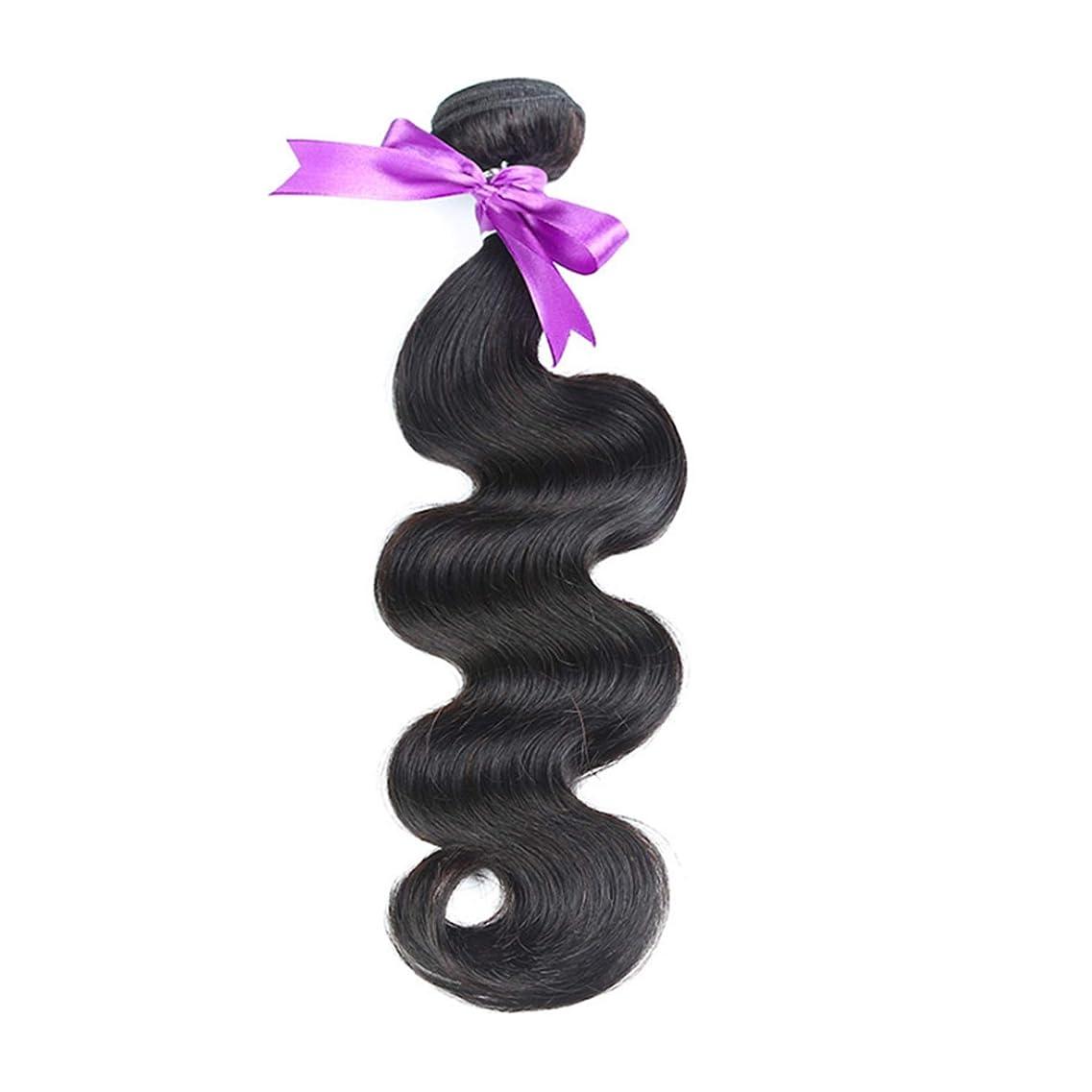 大通りダム知っているに立ち寄るマレーシア実体波髪の束100%人間の髪の毛の織り方ナチュラルカラー非レミーの髪の毛8-30インチ1個 かつら (Stretched Length : 20inches)