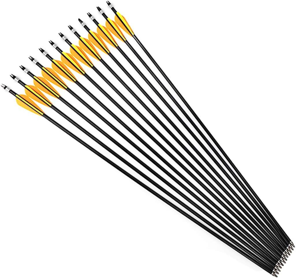HRCHCG 31 Inch Archery Fiberglass Arrow Practice Hunting Arrows