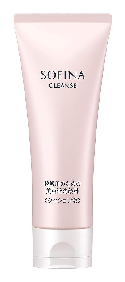 割合地図イブソフィーナ 乾燥肌のための美容液洗顔料 クッション泡 120g