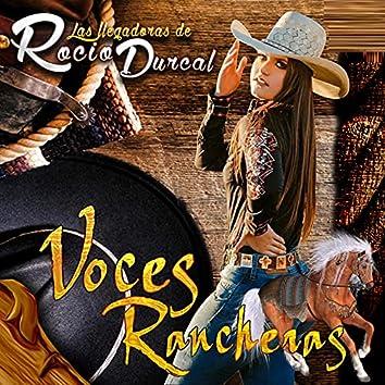 Las Llegadoras De Rocio Durcal