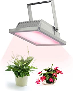 ACKE-Glow-Light-Plants-Light for Indoor Plants,Growing Lamp for Greenhouse,Grow Light Fixture for Plants' Growing (RW)…