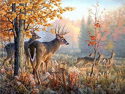 DIY 5D Diamond Painting Kit,Rhinestone Embroidery Full Drill Painting Arts Craft Fawn in The Forest DIY Painting Kit for Home Wall Decor Adults and Kids-70x90cm