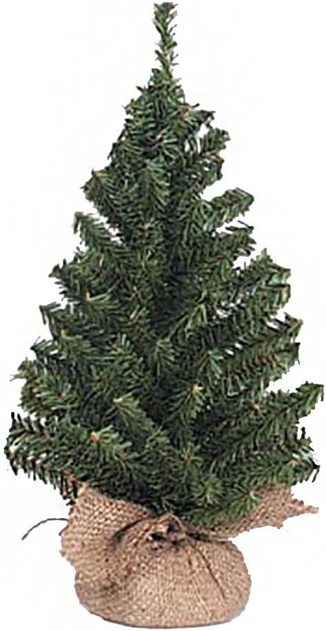 Canadian Tree with Burlap Base Sales for sale - inches 3 Tips 15 Now free shipping 108 pack