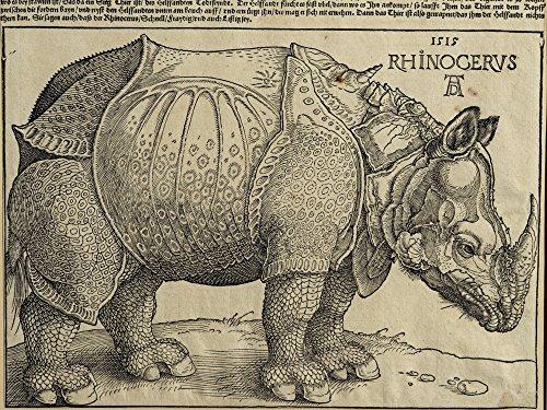 Artland Alte Meister Wandbild Albrecht Dürer Nashorn Für König Emanuel Leinwand Bilder 30 x 40 cm...