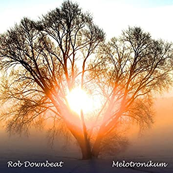 Melotronikum (Radio Edit)