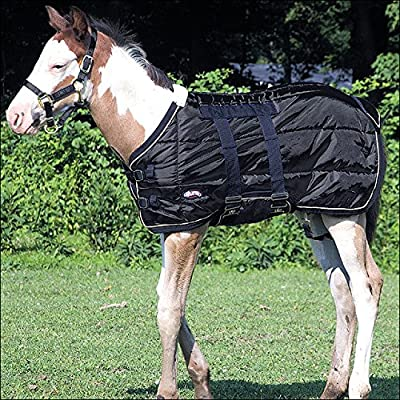 Weaver 420D Foal Stable Blanket, BLACK