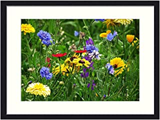 OiArt Wall Art Canvas Prints Wood Framed Paintings Artworks Pictures(20×14 inch)..