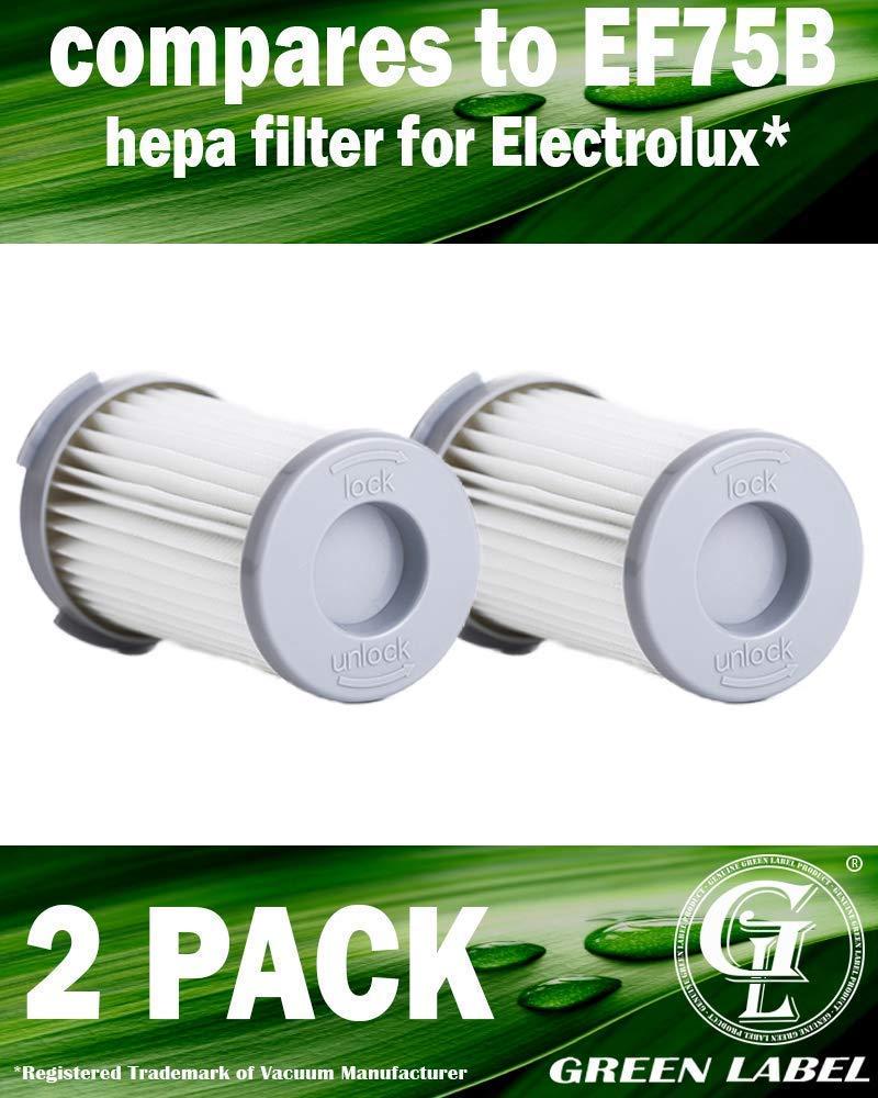 Green Label Empaque de 2 Filtros HEPA para aspiradora Electrolux ErgoSpace XXL Box 16 (reemplaza a EF75B, F120 (9001966051), AEF75B): Amazon.es: Hogar
