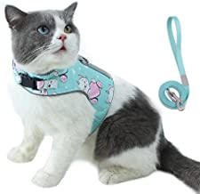 Allispast Soft Mesh Step-in Lightweight Kitten Harness with Comfort Liner and Safety Hook