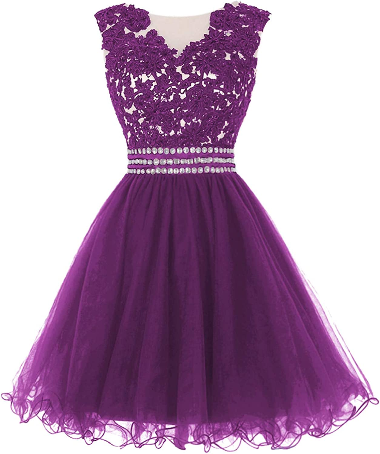 Prom Dress Short Tulle Party Dresses Lace Applique Cocktail Gowns Caystal Sash