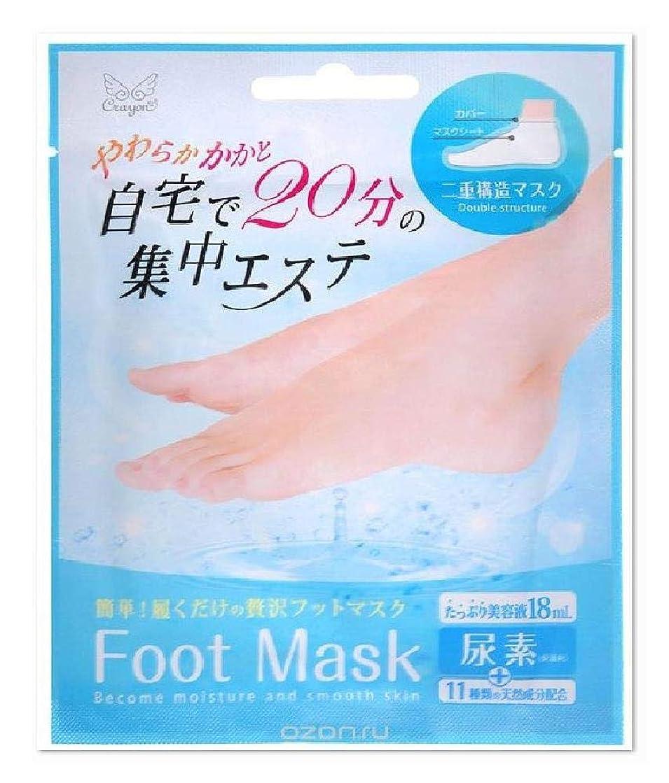 パトロール技術的な決定的フットマスク Foot Mask 自宅で20分の集中エステ やわらかかかと 二重構造マスク 尿素配合