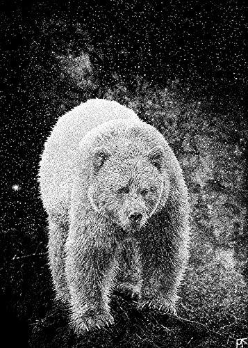 Spirit Bear - Kermode Bear (Hand Stippled Photograph)