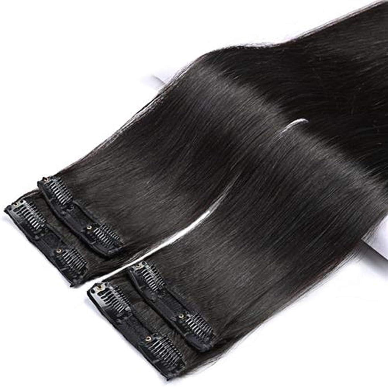 活力ポンド高尚なBOBIDYEE 100%本物のヘアクリップヘアエクステンション - ナチュラルロングストレートヘアコンポジットヘアレースかつらロールプレイングウィッグロングとショートの女性自然 (色 : Natural color, サイズ : 2 clip/50cm)
