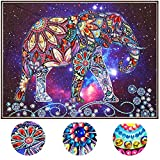 5D DIY Special Shaped Diamond Painting Kit, 18.5X 14.5 Inch Crystal Rhinestone Diamond Embroidery Paintings Pictures Arts Craft for Home Wall Decor