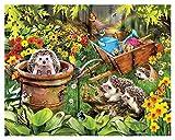 Pintura por números para Kits de Lona enrollados para Adultos para Artistas Principiantes-Acuarela acrílica Pintura Pintura al óleo Artes artesanía decoración Regalo- Flores erizos (Size : 50x60cm)