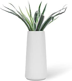 Best plain white ceramic vases Reviews