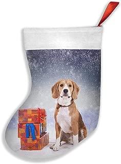 QAZWSX Beagle Dog Beside A Gift Box Personalized Christmas Hanging Stockings Bag Socks Christmas Tree Decoration Custom Gifts (Christmas Tree Decoration)