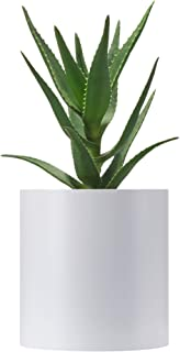 FaithLand Plant Pot 8 inch - Perfectly Fits
