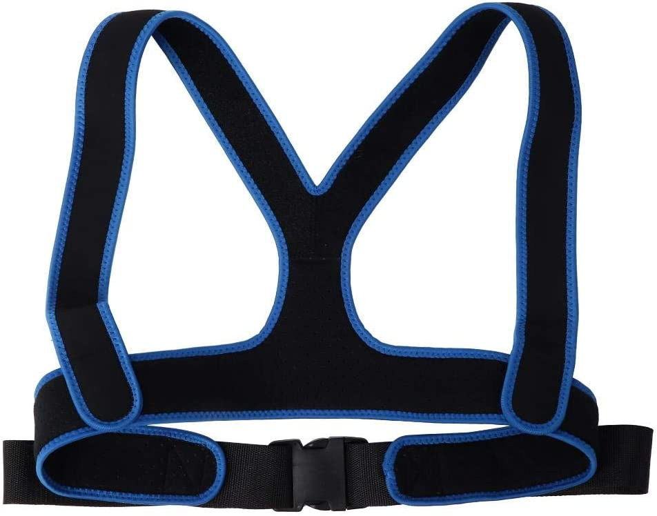 ! Super beauty product restock quality top! TARSHYRY Fees free Wheelchair Strap Belt