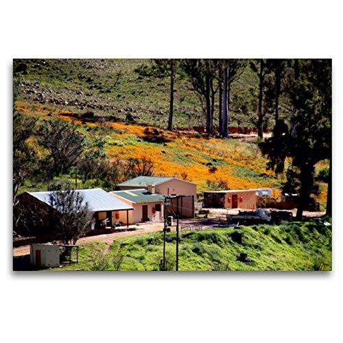 CALVENDO Premium Textil-Leinwand 120 x 80 cm Quer-Format Farm in den Cederberg Mountains, Südafrika, Leinwanddruck von Richard Walliser