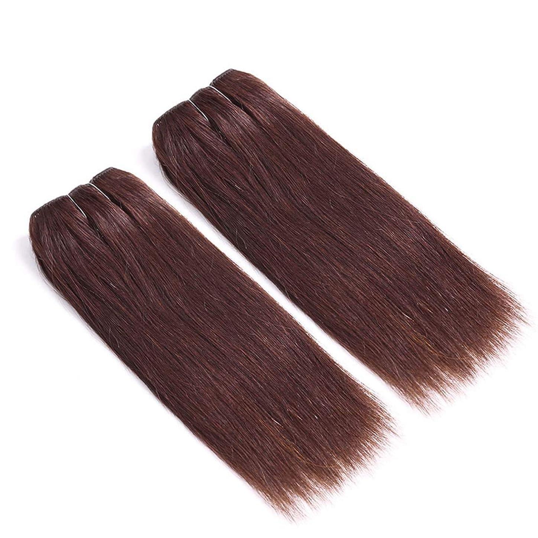 嵐サスペンド揃えるBOBIDYEE ハイエンドリアルヘアかつら女性のロングストレートヘアカーテンパーティードレスアップかつら合成髪レースかつらロールプレイングかつら (サイズ : 12inch)