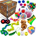 Sensory Fidget Toys Set, Fidget Toys for Adults and Kids, Stress Relief and Anti Anxiety Toys, Cool Fidget Toys Set 25 pcs, Non-Toxic Child Safe Fidget Toys, Fidget Cube to Improve Attention and Focus by Stashables