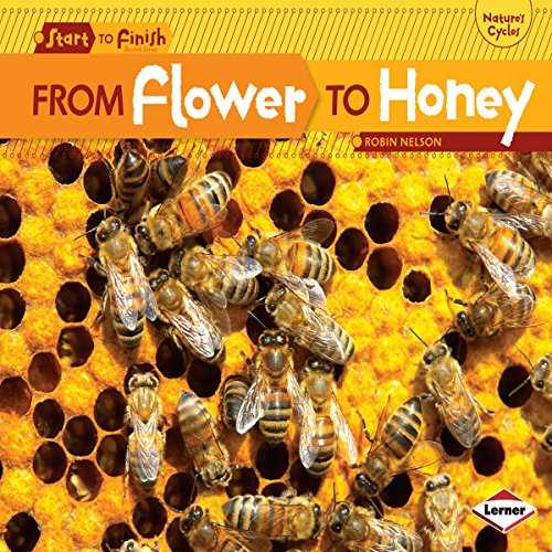 From Flower to Honey copertina