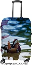 SCOCICI Chinese Mandarin Ducks Sail in River East Asian Winged Creature Peace Habitat Luggage Case Protective Baggage Suitcase Cover for 19