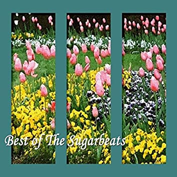 Best of The Sugarbeats