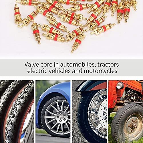 YeenGreen 43 Piezas Herramienta de Vástago Válvula, Juego de Núcleos de Válvula Válvulas de Neumáticos para Reparación y Instalación Neumáticos Automóvil