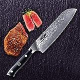 Kitchen Emperor Damastmesser Santoku, Kochmesser Santokumesser, 67 Schichten Damastmesser mit G10 Griff - 5