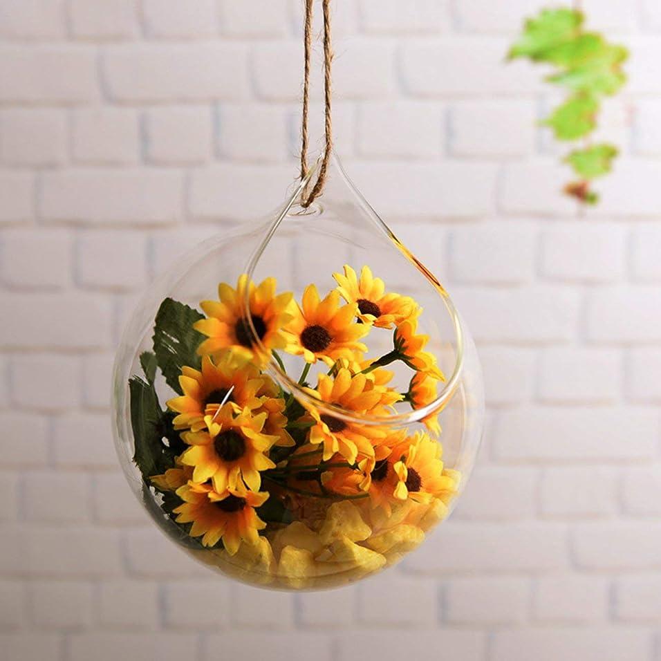 ブラザー理論タイプライターNancyMissY 水耕栽培植物のための壁掛け花瓶小さな金魚鉢水耕栽培花瓶StyLEDOrnamentガラス花瓶花植物
