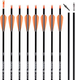 Carbon Arrow Practice Hunting Arrows with Removable Tips for Archery Compound & Recurve & Traditional Bow (Pack of 12)