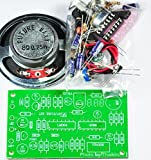 Human to Robot voice converter/Changer Unassembled kit for Student