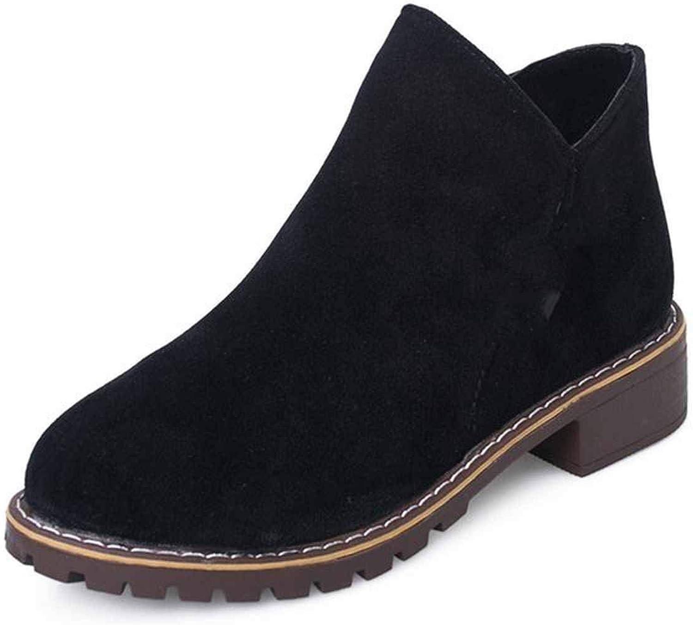 2018 Fashion Women Autumn Winter Classic Zipper Snow Ankle Suede Warm Fur Plush Boots