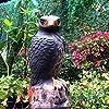 Frofine Realistico Falco Decoy Grande Falco Giardino Esterno Aquila Spaventapasseri Controllo dei parassiti da Giardino Deterrente per Uccelli Spaventa Uccelli Scaccia Piccioni Uccello Repeller #4
