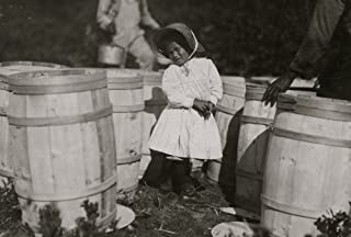 Mary Christmas nearly 4 years old Picks cranberries sometimes She is now picking up berries spilled at the barrels by Grandfather Grandpa says I make her pick sometimes yes Poster Print (18 x 24)