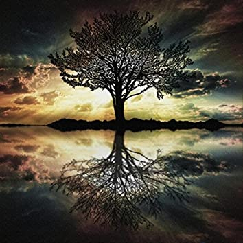 Seasons of Life: An Observation in Four Movements