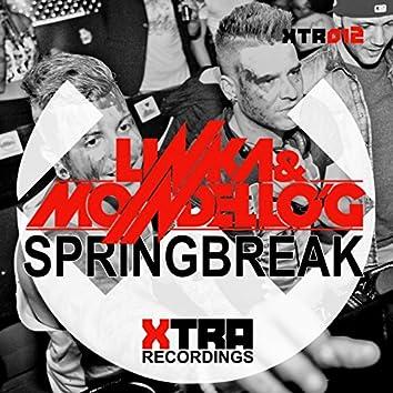Springbreak (Xtended Mix)