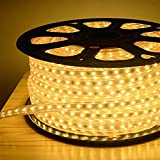 Rock Light Plastic LED Rope Light, 25 m, Warm White